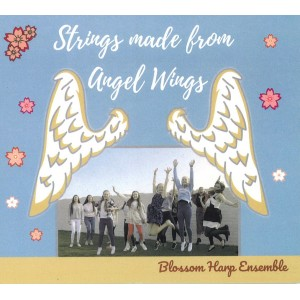 Strings made from Angel Wings